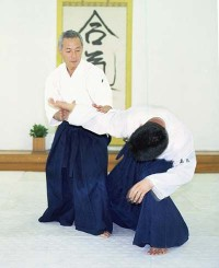 Сейширо Эндо. Интервью для Aikido Journal.