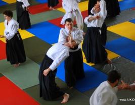 Миямото сихан Новосибирск 2014, семинар айкидо.